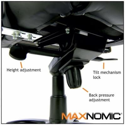 maxnomic review