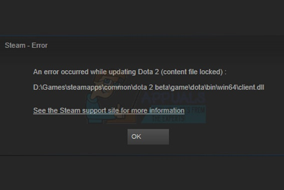 Steam Library Locked