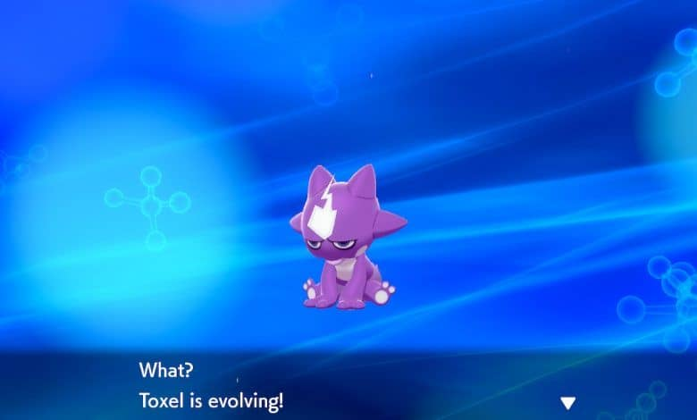 Pokémon Sword and Shield Guide How to Evolve Toxel into Toxtricity