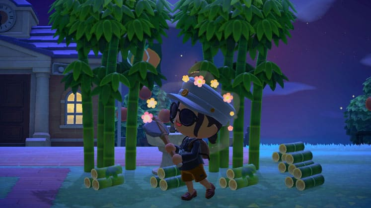 Animal Crossing New Horizons Where To Find Bamboo
