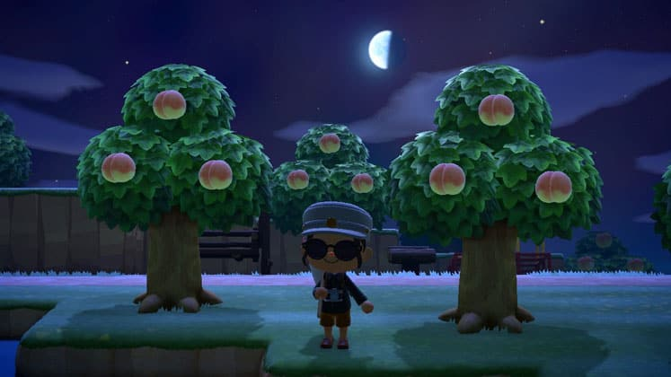 Animal Crossing New Horizons Where To Find Fruit