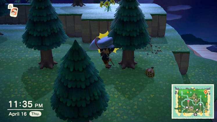 Animal Crossing New Horizons Where To Find Wasp Nests