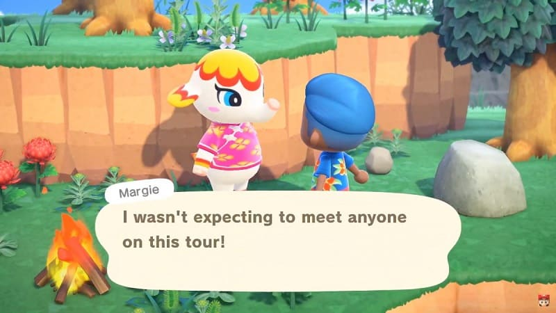 Animal Crossing New Horizons mystery tours