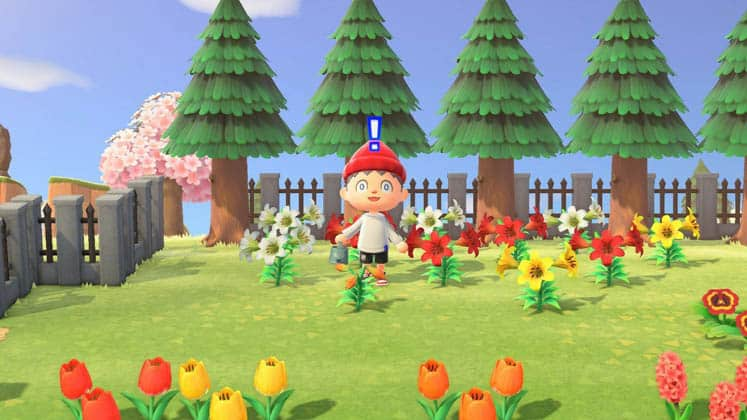 Animal Crossing Other Ways to Get Flowers
