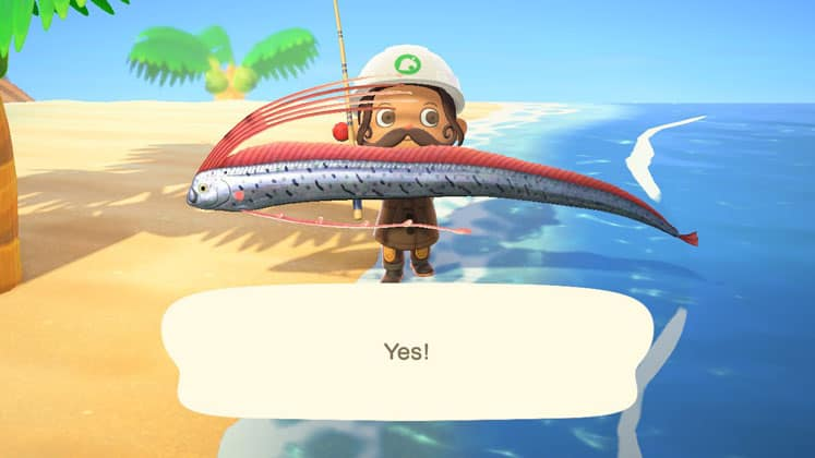 Animal Crossing Collect Bugs, Fish, And Fossils