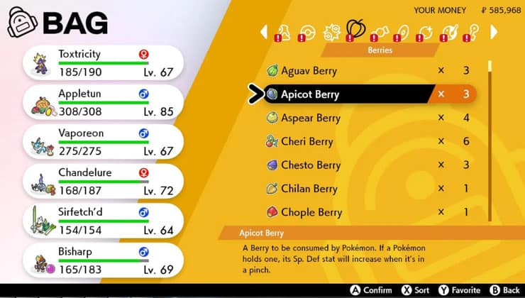 Pokemon Sword and Shield Guide Items