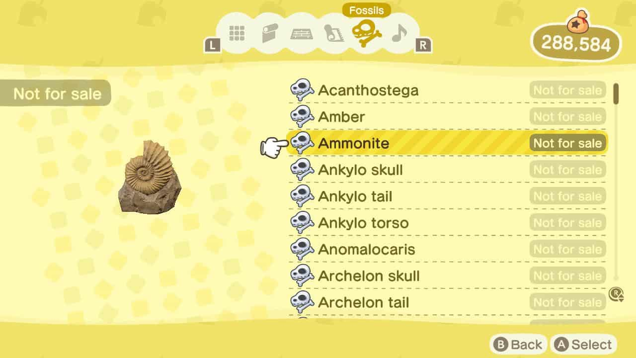 animal crossing new horizons check fossils