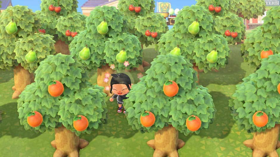 animal crossing new horizons sell fruits