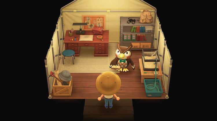 Animal Crossing How To Unlock The Museum