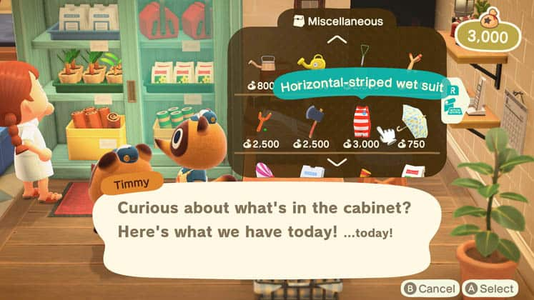Animal Crossing How To Get A Wet Suit