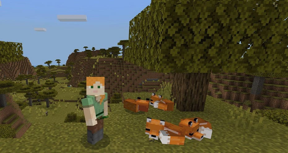 Minecraft Foxes