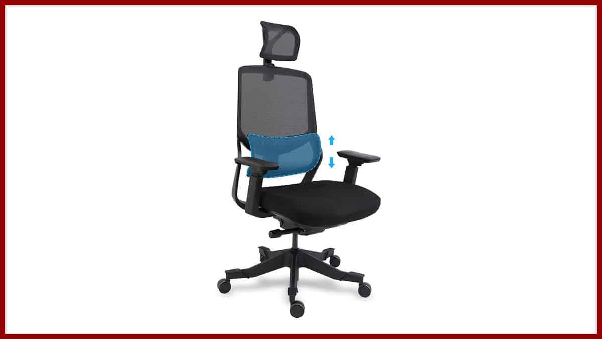 Flexispot Soutien Ergonomic Chair