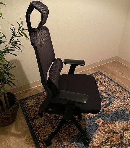 FlexiSpot Soutien Office Chair